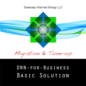 DNN Basic Solution Migration & Tune-up